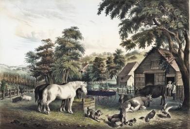 14 Fanny Palmer (American artist, 1812-1876) Published by N Currier American Farm Scenes 3 1853